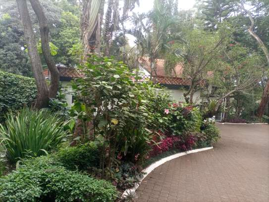 4 bedroom house for rent in Lavington image 7