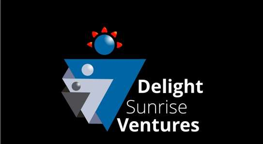 Delight Sunrise Ventures image 1