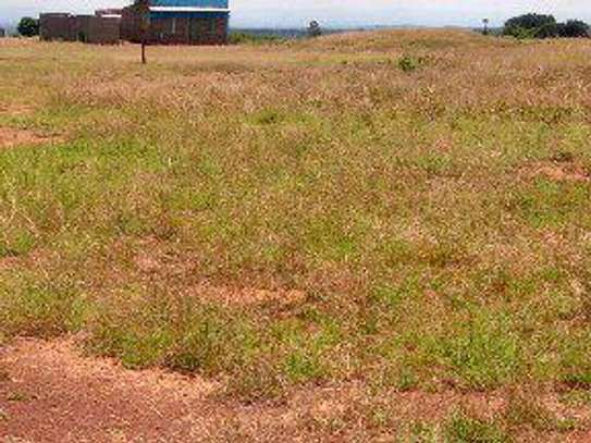 Juja farm  prime plots for sale image 3