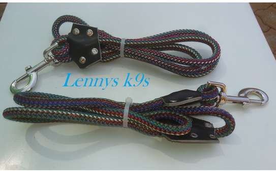 Dog leashes and collars.