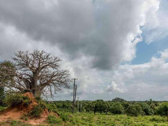 Malindi Town - Residential Land, Land image 6
