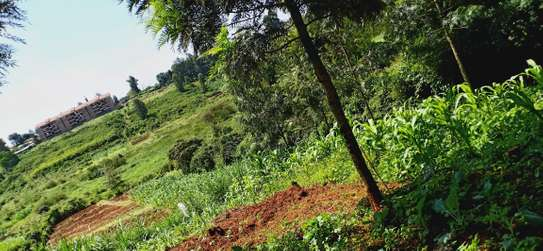 1/2 Hectare land for sale in ruaka with ready title few minutes walk from ruaka stage image 4