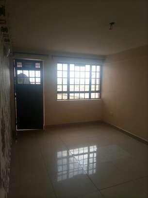 Spacious apartments image 9