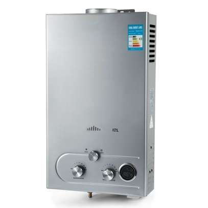 Hot Shower Tankless Gas Instant Water Heater image 1