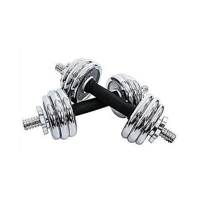 Dumbbell weights