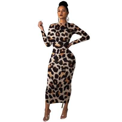 Leopard Print Maxi Dress image 1