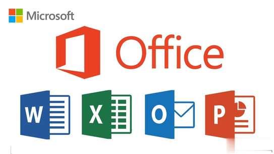 Microsoft Office 2019 Professional Plus (Windows/Mac) image 3