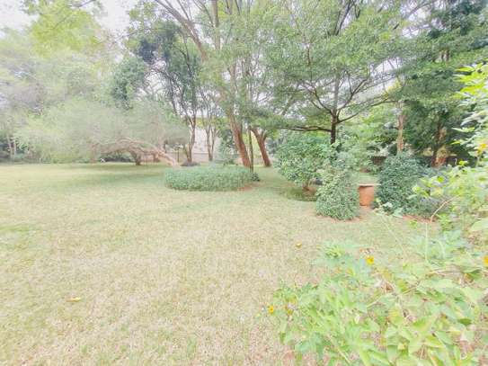 3 bedroom house for rent in Lavington image 19