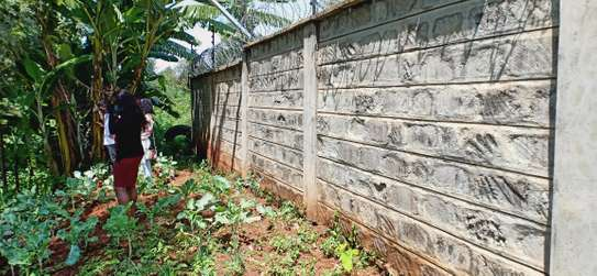 1/2 Hectare land for sale in ruaka with ready title few minutes walk from ruaka stage image 3