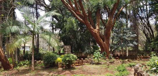 929 m² commercial property for rent in Lavington image 14