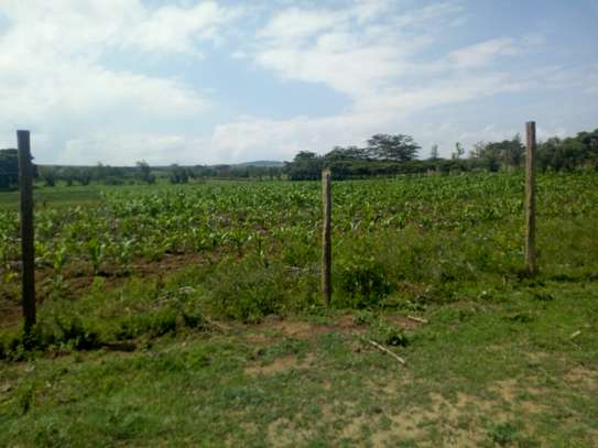 1acre land for sale in Naivasha image 3