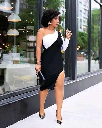 Zipped Dress image 1