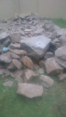 RUBBLE REMOVAL, DEMOLITIONS, TREE FELLING AND FILLINGS image 2