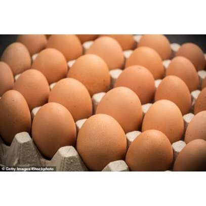 EGGS IN WHOLESALE AND RETAIL image 1