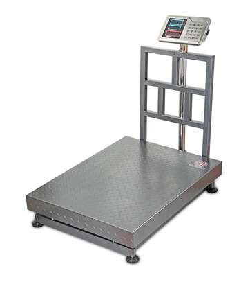 Digital Floor Scale (500kg Capacity)