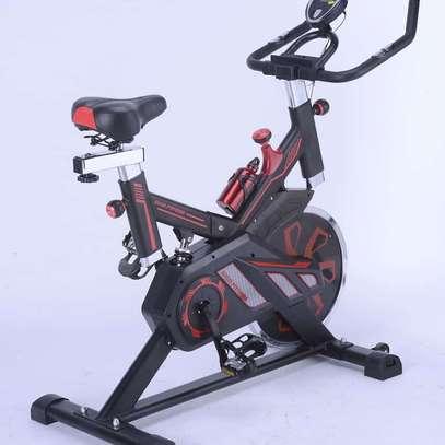 S100 Spinning bike image 2
