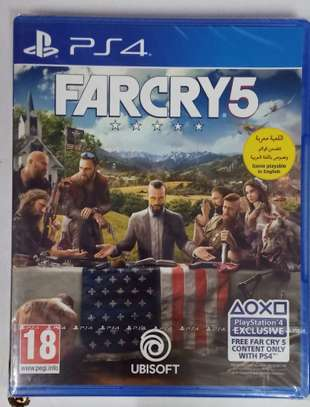 Far Cry 5 PS4 image 2