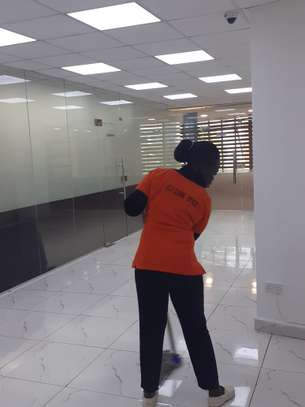 ELLA HOUSE CLEANING SERVICES & PEST CONTROL SERVICES IN NAIROBI KENYA image 4