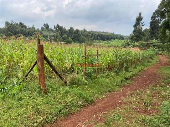 Kikuyu Town - Residential Land, Land image 12
