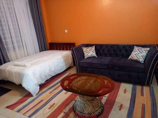 furnished studio apartment Kasarani seasons image 4