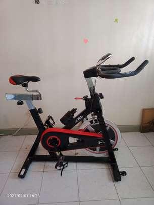 Original JLL IC300 Indoor Cardio Fitness Bike image 1