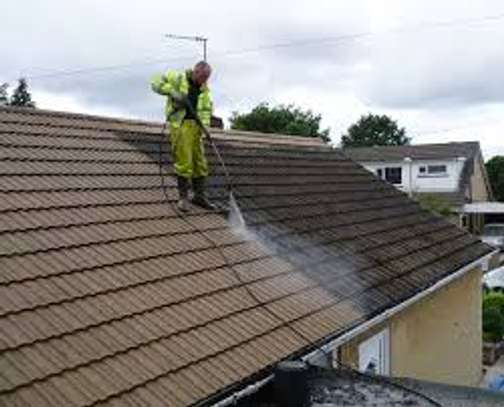 Roof cleaning services image 2