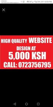 Website design at 5000 image 1
