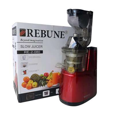 Rebune Slow Juicer RE-2-080 image 2