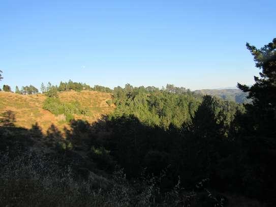 42 Acre Land in Ol Kalou, Nyandarua image 1