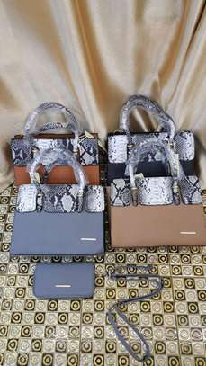 2 in 1 Animal Print Handbags