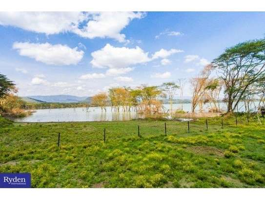 land for sale in Naivasha East image 5