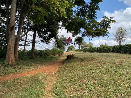 0.25 ac land for sale in Ruiru image 5