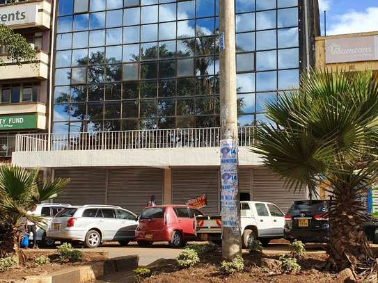Nyeri Town - Commercial Property image 1