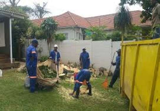 Reliable & Affordable Gardeners |High Quality Gardening & Landscaping.Contact us today image 1