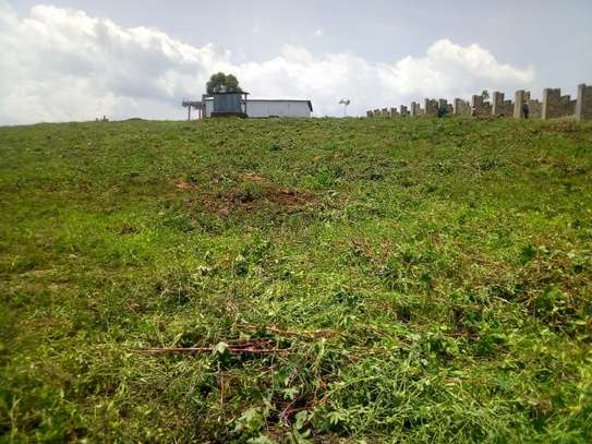 0.25 ac land for sale in Riat Hills image 4
