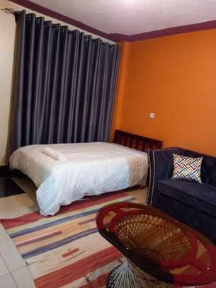furnished studio apartment Kasarani seasons image 5