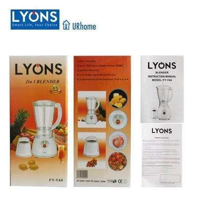 Lyons 2 in 1 Blender with Grinder image 1