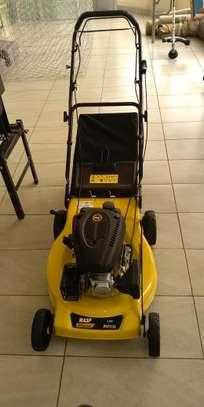 lawn mower image 1