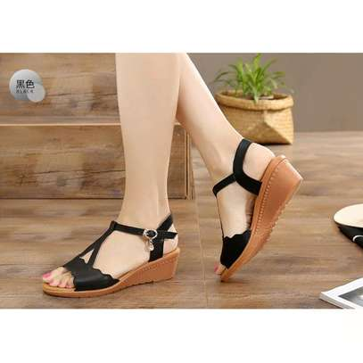 Open Wedges image 2