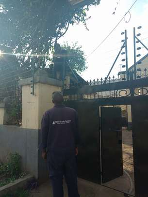 swing gate automatic gate installer in kenya image 3