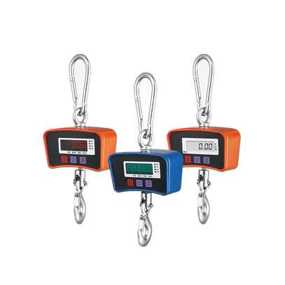 High Accuracy Crane scale with hook 500kg image 1