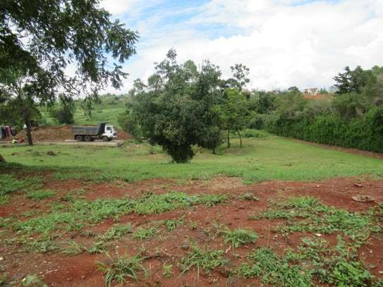 North Muthaiga - Land, Residential Land image 4