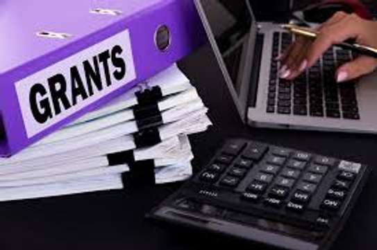 Professional Grant Writing Services image 1