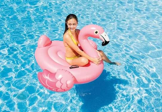 Flamingo Ride-on Swimming Floater image 1