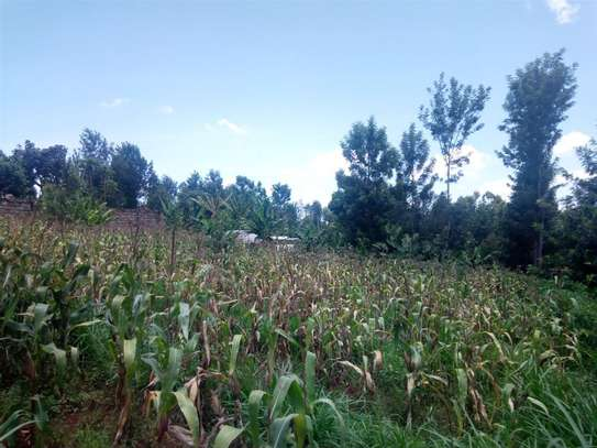 Gatundu South - Residential Land, Land image 6