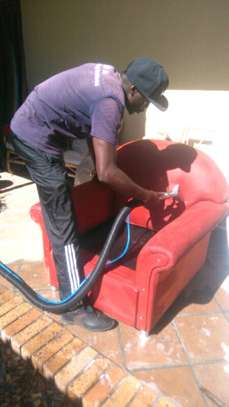 Professional Carpet Cleaning / Stain removal / House Cleaning image 1