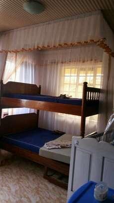 Rail Shears Mosquito Nets image 4
