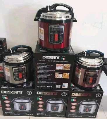 6L Dessini Electric Pressure cooker image 1