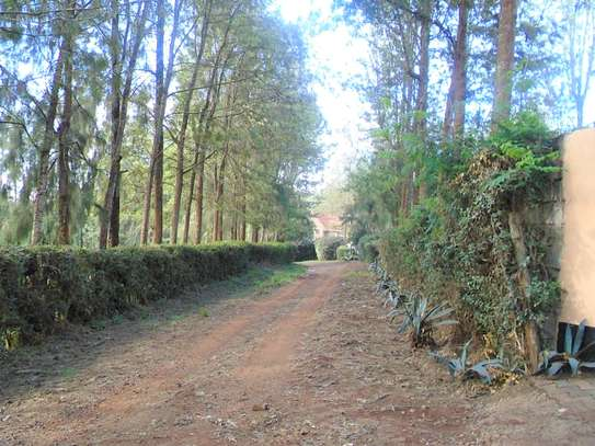 4 bedroom townhouse for rent in Ngong image 15