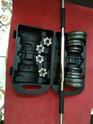 20 kgs iron cast dumbbell image 2